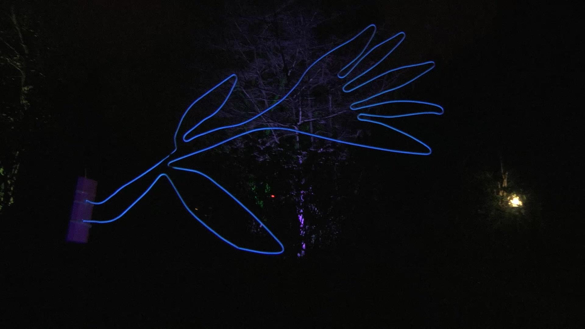 Winterlichter16_1700007