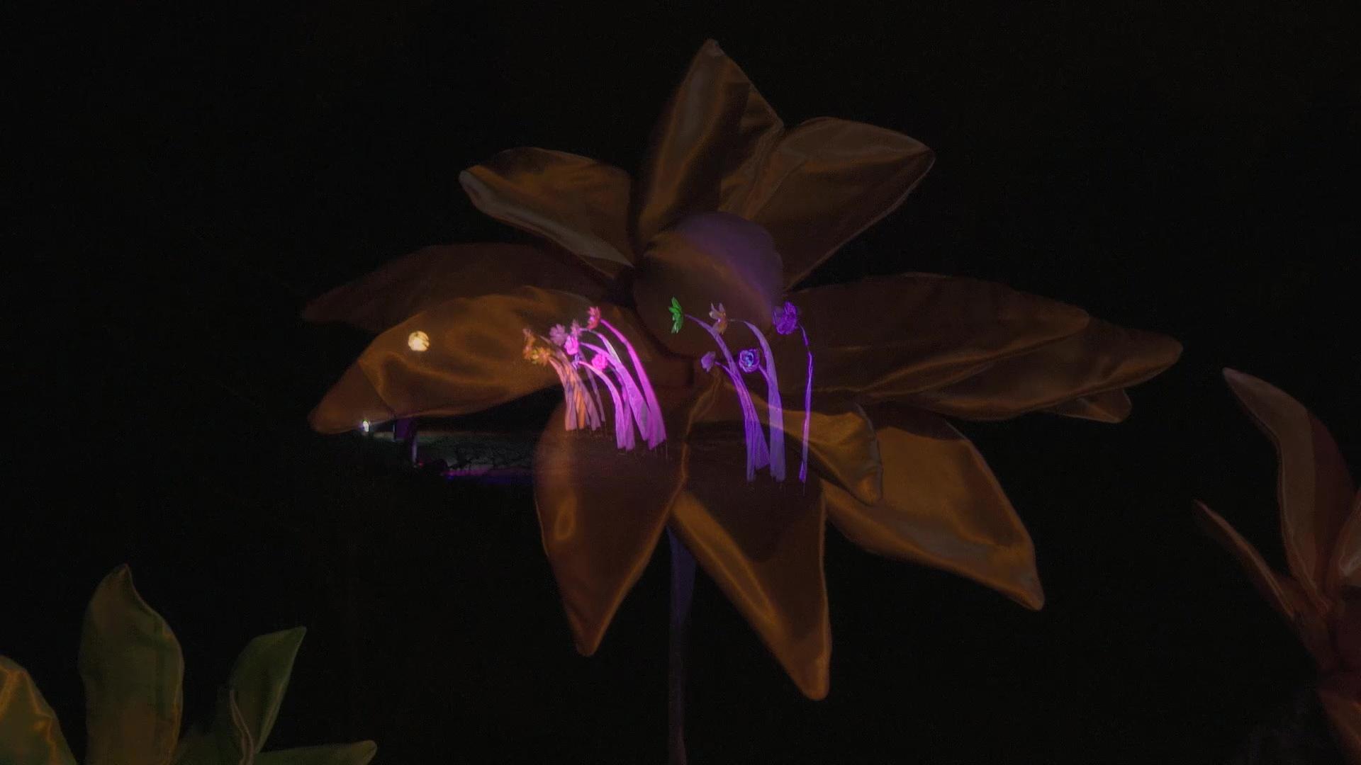 Winterlichter16_1700011
